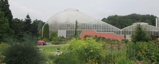 Návštěva botanické zahrady v Teplicích