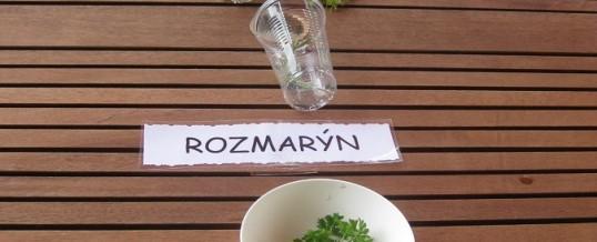 Zahradní terapie s ochutnávkou vypěstovaných bylin