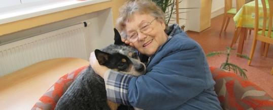 Canisterapie aneb terapie za pomoci psů