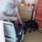 sedící seniorka s pejskem